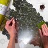 Скретч-карта Pinzel Українські Карпати  біла