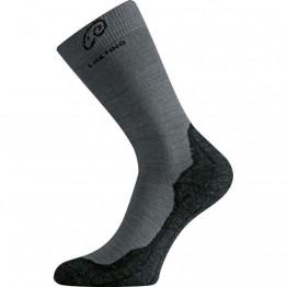 Шкарпетки Lasting WHI сірі/чорні