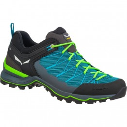 Кросівки Salewa MS MTN Trainer Lite чоловічі сині