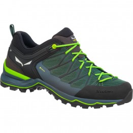 Кроссовки Salewa MS MTN Trainer Lite GTX мужские зеленые